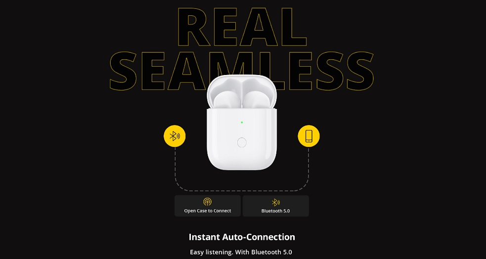 realme Buds Wireless case